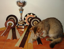 Keela with her FB awards