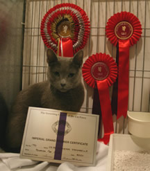Xaria sitting with her rosettes and certificate