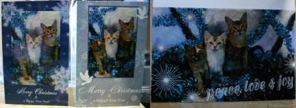The Three Designs for the Christmas card