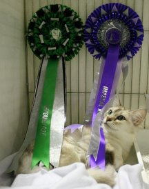 Darna with her two Reserve Imperial rosettes