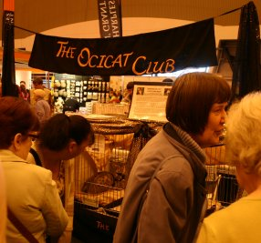 The Ocicat Club stand
