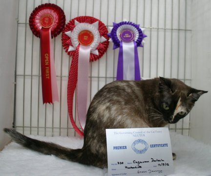 Quinn with her awards