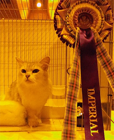 Lainni with her Imperial rosette
