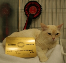 Etak with his first Challenge Certificate