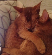 And cuddled up together